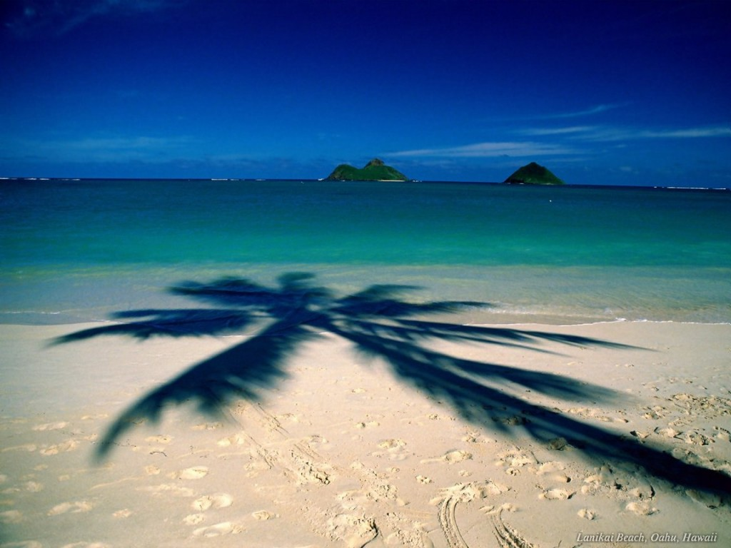 beach vacation packages vacation package